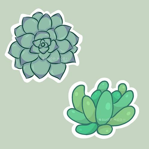 Succulent Sticker Pack