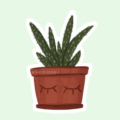 Aloe Sticker (@laura.m.dumitriu)