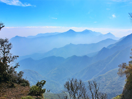 Four Must Visit Hill Stations in Southern India