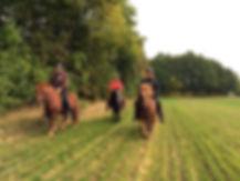 Per, Hanne og Brian på islandsk hesteryg i Hannenov og Borremose området i Guldborgsund