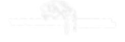 logo 1white nobackground.png