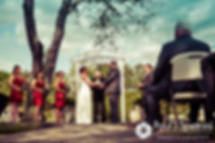 Latasha and Justin listen to their officiant during their May 2016 wedding at Country Gardens in Rehoboth, Massachusetts.