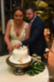 Ali and Gary cut the cake during their May 2018 wedding reception at the Roger Williams Park Botanical Center in Providence, Rhode Island.