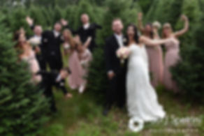 Lauryn and Justin pose for a photo with their wedding party during their July 2016 wedding reception at the Overlook at Geer Tree Farm in Griswold, Connecticut.