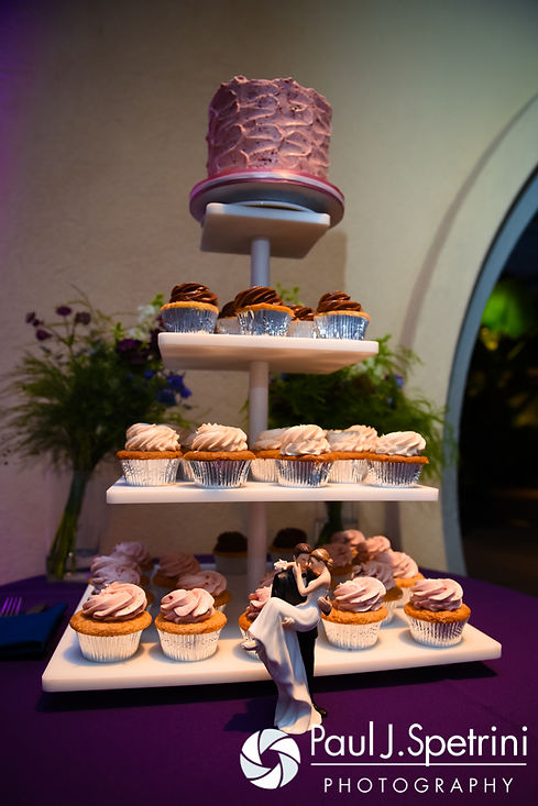 A look at the cake and cupcakes on display at Jen and Kyle's September 2016 wedding reception at the Roger Williams Park Botanical Center in Providence, Rhode Island.