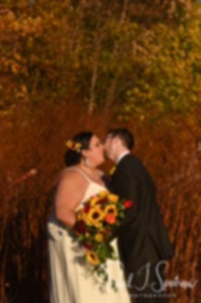 Stonehurst Manor Wedding Photography, Wedding Reception Photos