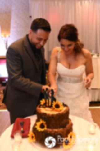 Dallas and Nicky cut the cake during their September 2017 wedding reception at the Crowne Plaza Hotel in Warwick, Rhode Island.