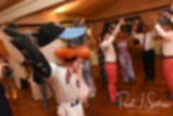 A mascot from the Newport Gulls dances during Mike & Kate's May 2018 wedding reception at Regatta Place in Newport, Rhode Island.