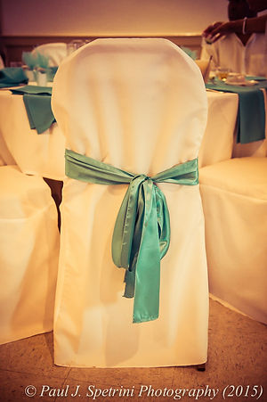 The chair covers at Joe and Jean Andrade's wedding.