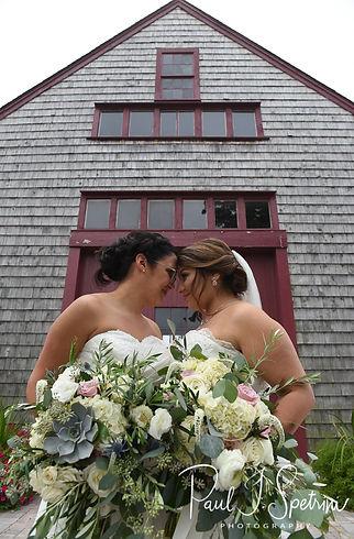 Chamberlain Farm Wedding Photography, Bride and Bride Formal Photos