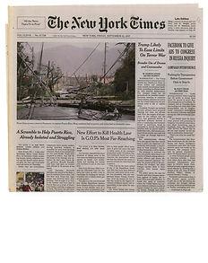 Shaweesh-The New York Times .jpg