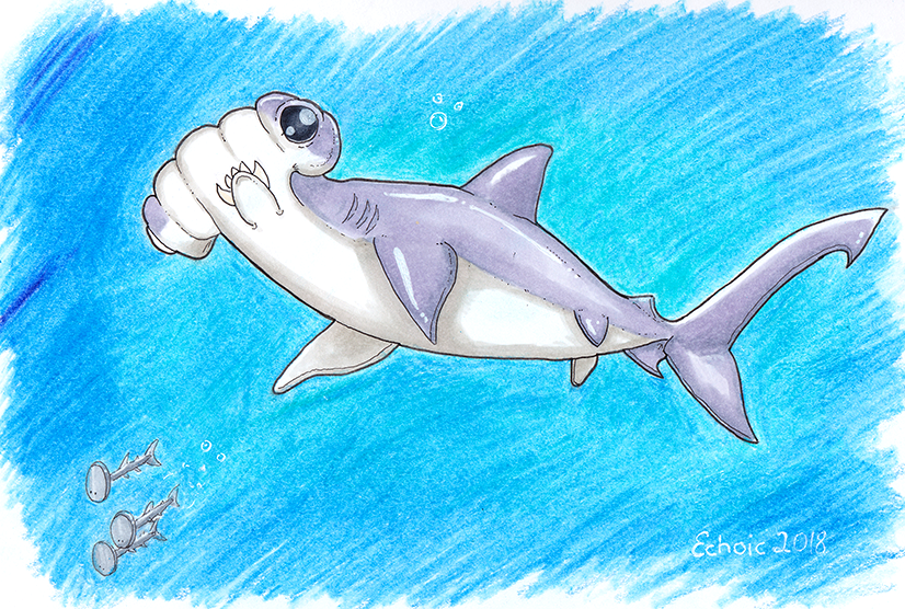 Sharkweek2.png