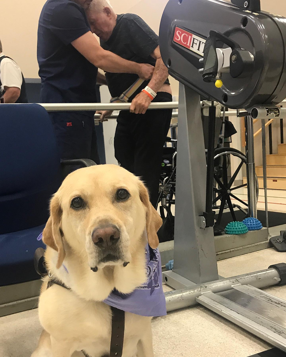 PD: Zoe sitting on the floor in a large gym area. Grandpa George is in the background holding onto parallel bars with the help of a therapist. He was able to hop twelve feet down the bars on his left leg with a little help during his very first session. He reminded Kristin when she was leaving to go get all of her needed hours in on the bike to make him proud.