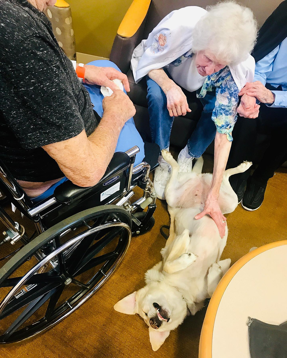 PD: Grandpa in his wheelchair with two of his sister, Jody and Alice, petting Zoe as she lays on her back for belly rubs