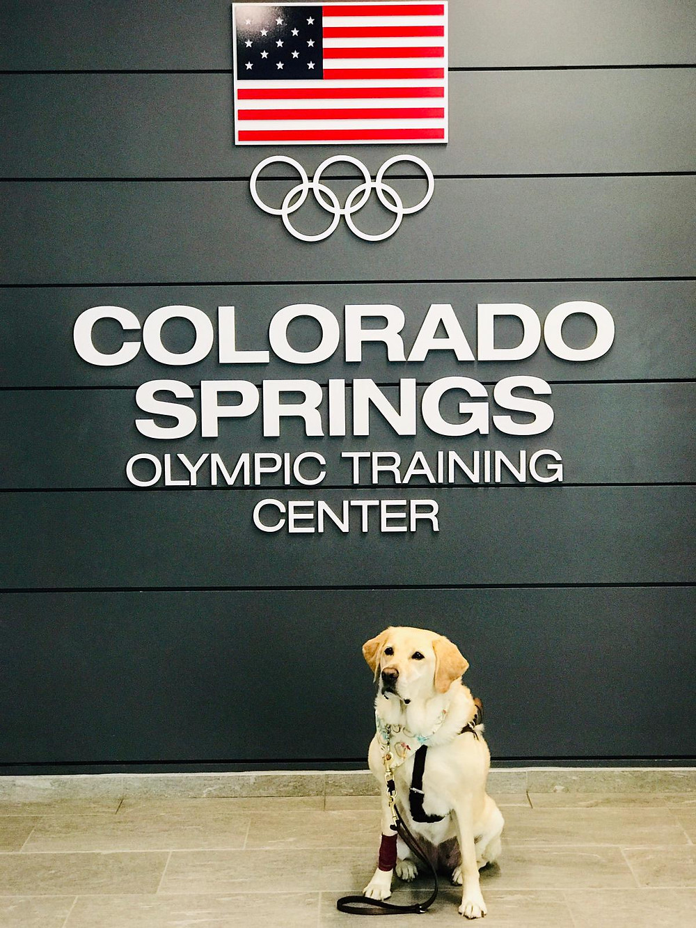 PD: Zoe poses in front of a wall that says Colorado Spring Olympic Training Center. There is an image of the American flag and the Olympic Rings at the top.