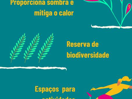 Benefícios das áreas verdes