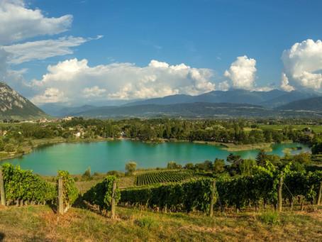 A proximité du gîte : Apéro'vignes en Savoie