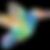 colibri%252520bird_edited_edited_edited.