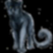 panther_03.png