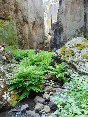 Owyhee, Jarbidge, Bruneau Canyonlands Hiking & Canyoneering Adventure