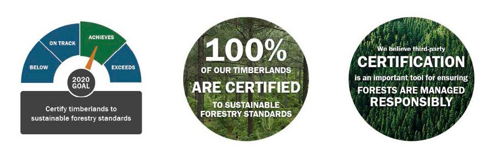 Madera certificada de bosque sustentable