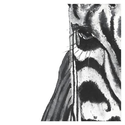 """Zebra 10"""" x 10"""""""