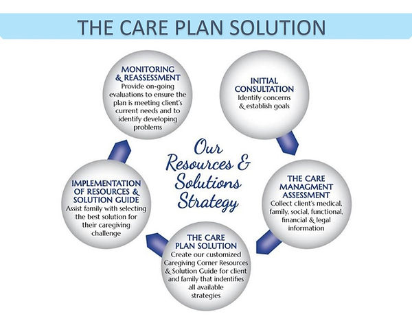 elder care plan solution-lt blue-dark bl