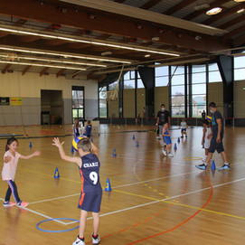 Volley Ball et Basket Ensemble