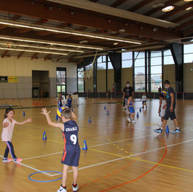 Volley Ball et Basket Ensemble