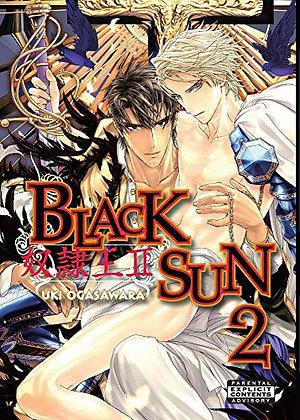 Black Sun Volume 2 (Yaoi) Paperback – Illustrated, February 14, 2012 by Uki Ogas