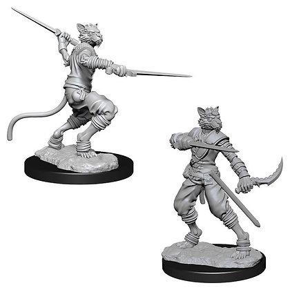 Nolzur's Marvelous Minis: Male Tabaxi Rogue