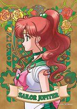 208-piece Art Crystal Jigsaw Sailor Moon Crystal SAILOR JUPITER