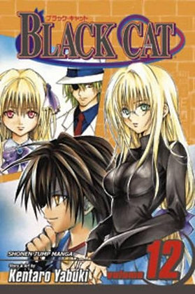 Black Cat, Vol. 12 Paperback – January 1, 2008 by Kentaro Yabuki  (Author)
