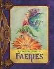 A Practical Guide to Faeries by Susan Morris (2009, Hardcover)