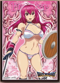 Ensky Character Sleeve Bikini Warriors Fighter (EN-140) (Card Sleeve)
