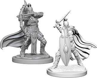 Pathfinder Deep Cuts Unpainted Miniatures: Female Knights / Gray Maidens WIZKIDS