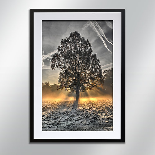 Tatton frost, Wall Art, Cityscape, Fine Art Photography