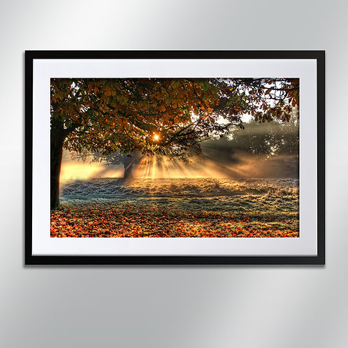 Tatton sunburst, Wall Art, Cityscape, Fine Art Photography