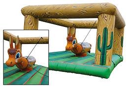 Rodéo à cordes - Structure pro.jpg
