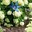 Thumbnail: Filigree Flower Pinwheel - Blue