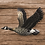 Thumbnail: Atlantic Canada Goose Wall Art