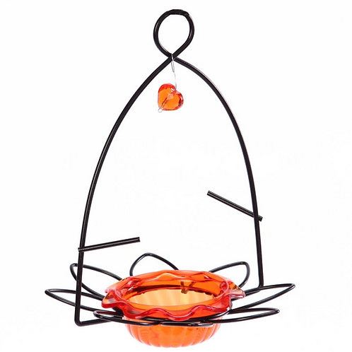 Oriole - Flower Feeder