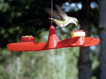 Spinner Dots Hummingbird Feeder