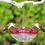 Thumbnail: Aspects - HummBlossom 4 oz Feeder