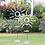 """Thumbnail: 60"""" Sunburst Garden Stand"""