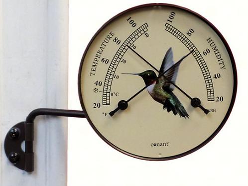 Hummingbird Comfortmeter Bronze Patina