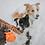 Thumbnail: Orange Braided Infinity Tug Toy