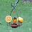 Thumbnail: Oriole - Flower Feeder