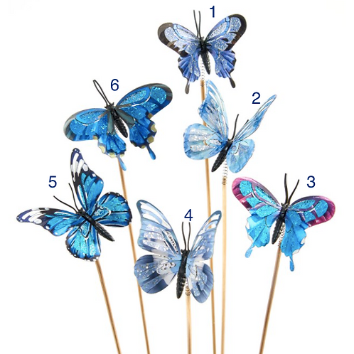 Butterfly Plant Pics - 6 assorted styles