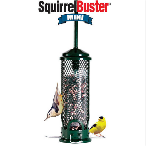 Brome Squirrel Buster -Mini